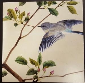 Birdthanks
